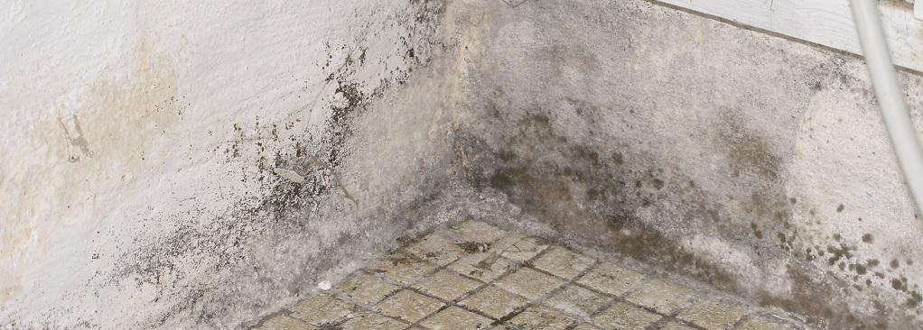 4 Slider billede 1022x366